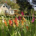 English Country Garden B&B